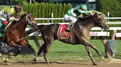 EXAGGERATOR shipped in from California and put on a brave performance Aug. 16 in the $200,000 Saratoga Special (gr. II) at Saratoga Race Course, splitting horses midstretch before surging to victory.