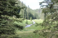 Hiking in the alps Alps, Hiking, Mountains, Nature, Travel, Walks, Naturaleza, Viajes, Traveling