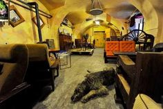 Introducing Vzorkovna - Restaurants - Night & Day - The Prague Post - Cheap interesting bar in the city center.