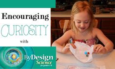 By Design Science Textbook Review