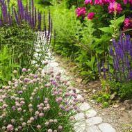 Gartengestaltung   Ideen Und Planung
