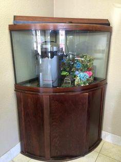 Craigslist on pinterest acrylic aquarium acrylics and for Craigslist fish tank