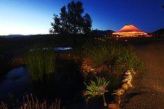 Mayacamas Ranch, Calistoga Napa Valley Wedding Site
