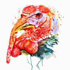 """Watercolor painting of a turkey.This artwork is featured in:""""Amazing Art And Artists"""" Art"""" And Traditional Art And Photography"""" Art And Resources"""" Framed Art Prints, Fine Art Prints, Canvas Prints, Watercolor Portraits, Watercolor Paintings, Buy Prints, Bird Art, Watercolor Illustration, Traditional Art"""