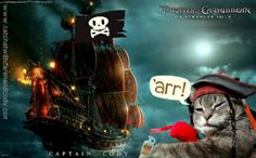Cat Chat With Caren And Cody: Want to Woo a Wench? It's Meow or Talk Like A Pirate Day!!