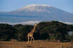 Hiking Up Mount Kilimanjaro in Africa