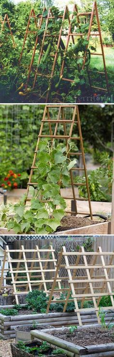 21 Easy Ideas to Building DIY Trellis for Veggies and Fruits – Elaine – diy garden landscaping Veg Garden, Vegetable Garden Design, Fruit Garden, Garden Care, Edible Garden, Veggie Gardens, Fence Garden, Garden Landscaping, Garden Planters