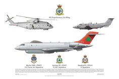 902 Expeditionary Air Wing (Merlin, Sentinel, Shadow)