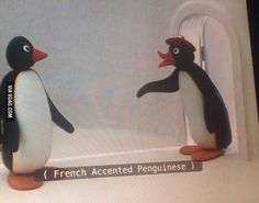 Find images and videos about funny, french and pingu on We Heart It - the app to get lost in what you love. Dankest Memes, Funny Memes, Hilarious, Jokes, True Memes, Reaction Pictures, Funny Pictures, Pingu Memes, I Like Dogs