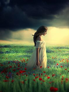 there was a storm fast approaching, but she remained in the field of poppies…