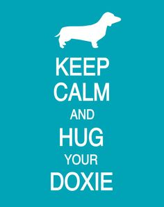 Keep Calm and Hug Your Doxie
