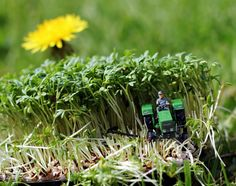 Kleine Welten mit Eisenbahnfiguren - Seite 6 - DSLR-Forum