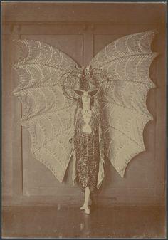 Portrait of Pixie Herbert in a bat costume - 1923.