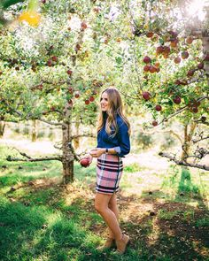 Apple Hill adventures on galmeetsglam.com today #happynovember #applehill #plaid #applepicking #ontheblog