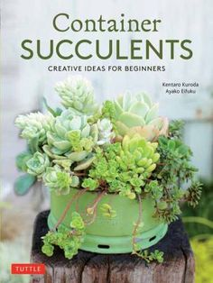 Container Succulents is the perfect book for container gardening beginners who don't have a lot of space to work with. Learn how to care for and display individual succulent varieties, or get creative with groupings that combine multiple plants with complementary colours, shapes and sizes. Whether you prefer a garden that is simple or intricate, this book covers all the basics of container selection and succulent care to ensure healthy plants. Succulent Care, Succulent Gardening, Succulents Garden, Container Gardening, Bonsai, Fall Containers, Beginner Books, Organic Fertilizer, Different Plants
