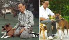 Along with other members of the Thai royal family, King Bhumibol Adulyadej has a number of pet dogs.