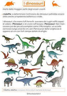 I Dinosauri: Schede Didattiche per la Scuola Primaria | PianetaBambini.it History For Kids, New Years Eve Party, 3, Problem Solving, Facts, School, Pictures, Geography, Home