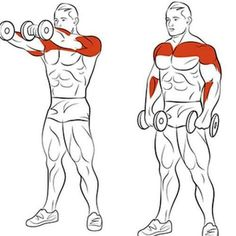 8 Amazing Shoulder Exercises - WeGrowMuscle Men's Super Hero Shirts, Women's Super Hero Shirts, Leggings, Gadgets