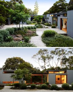 This modern house has a lush courtyard that guides visitors to the front door. This modern house has a lush courtyard that guides visitors to the front door. House Landscape, Landscape Design, Front Door Landscaping, Mulch Landscaping, Landscaping Ideas, Casa Patio, Modern Farmhouse Exterior, 3d Studio, Small Garden Design