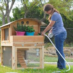 The Starter Coop is just what it says…a top quality low cost way to get into chickens.