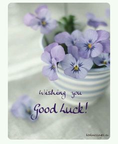 In today's post, we are presenting good morning msg. If you are searching for good morning msg you are welcome to our website. Exam Wishes Good Luck, Good Luck Gif, Good Luck For Exams, Good Luck Wishes, Good Luck Cards, Good Morning Flowers, Good Morning Love, Good Morning Greetings, Good Morning Messages