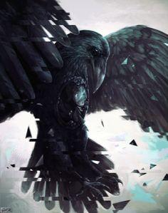 raven by 6VCR