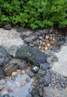 The Trout Stream : You can read the story of this monstrous landscaping project on my blog. Landscaping With Rocks, Outdoor Landscaping, Outdoor Gardens, Outdoor Decor, Stone Path, Pebble Stone, Backyard Drainage, Water Features In The Garden, Garden Water