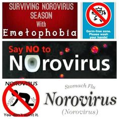 The Busy Broad: Surviving Norovirus Season with Emetophobia