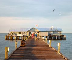 Best Florida Vacations for Families: Anna Maria Island #travel #family