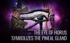 Pineal Gland.  The cleansing and unblocking of the Pineal Gland enables our…
