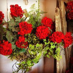 Red for love #roograyson #design #florist #decor #flowers #homedecor #red