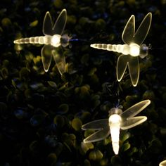 WARM WHITE OUTDOOR DRAGONFLY SOLAR FAIRY LIGHTS, 30 LED'S  WAS: £14.99  PRICE:£9.99 INC. VAT