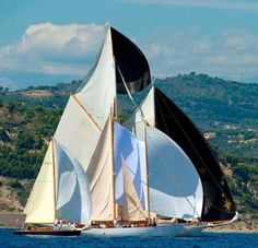 Black & white Sailing - Seatech Marine Products & Daily Watermakers