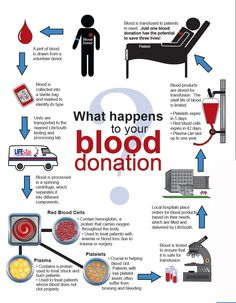 Where does your blood donation go?