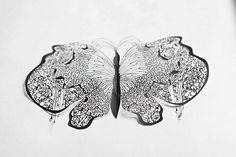 Hina Aoyama, papillon