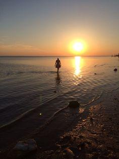 Vadehavet juli