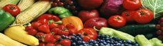Tomatensaus – Basis Voor Veel Toepassingen! | KOOKRECEPTEN met een verhaal