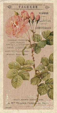 Vintage Burlap Floral 4 Painting