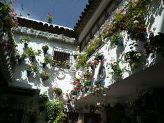 Patio Calle Guzmanas.Cordoba.