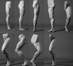 Leg Poses - -You can find Zbrush and more on our website. Leg Anatomy, Human Body Anatomy, Anatomy Poses, Muscle Anatomy, Leg Reference, Human Reference, Anatomy Reference, Anatomy Sketches, Anatomy Drawing