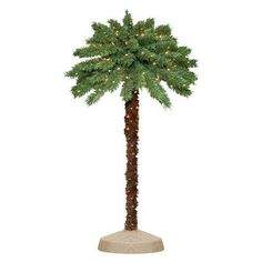 5' Pre-Lit Palm Tree - Clear Lights.   Fun different Christmas tree?