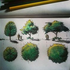Landscape architecture rendering sketch Ideas for 2019 Landscape Architecture Drawing, Architecture Sketchbook, Landscape Sketch, Landscape Plans, Landscape Drawings, Landscape Design, Plant Sketches, Tree Sketches, Drawing Sketches
