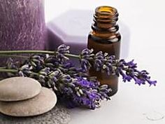 Learn how to make a natural anti-aging essential oil blend for your natural beauty regimen to use in DIY facial serums body scrubs night creams and other natural skin care products you can make at home. Essential Oils For Fibromyalgia, Essential Oils For Headaches, Essential Oils For Skin, Rose Essential Oil, Essential Oil Bottles, Essential Oil Blends, Anti Aging, Oils For Sore Throat, Oil For Stretch Marks