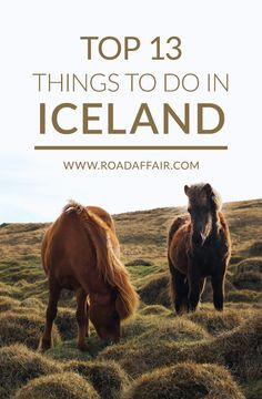 Traveling to Iceland soon? Here are some of the best things to do in Iceland.