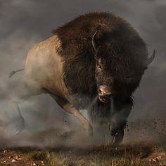 Digital Art - Carga de bisonte por Daniel Eskridge