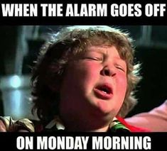 Monday Morning Meme - Do you sleep through your alarm or do you just dream about it? Some days I'm a morning person and - Hate Monday Quotes, Funny Monday Memes, Friday Quotes Humor, I Hate Mondays, Work Quotes, Funny Memes, Memes Humor, Friday Memes, Funny Friday