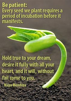 """#MotivationalMonday """"Hold True To Your Dream!"""""""