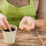 Návod na únorový řez révy vinné: test odhalí, o kolik oček zkrátit - Užitková zahrada Plastic Cutting Board, Rv, Motorhome, Camper Tops