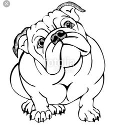 The major breeds of bulldogs are English bulldog, American bulldog, and French bulldog. The bulldog has a broad shoulder which matches with the head. Blue English Bulldogs, English Bulldog Art, English Bulldog Puppies, Bulldogge Tattoo, Bulldog Drawing, Bulldog Mascot, Illustration, Line Drawing, Animal Drawings