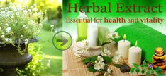 herbal-extract-mountainmeadow-herbs